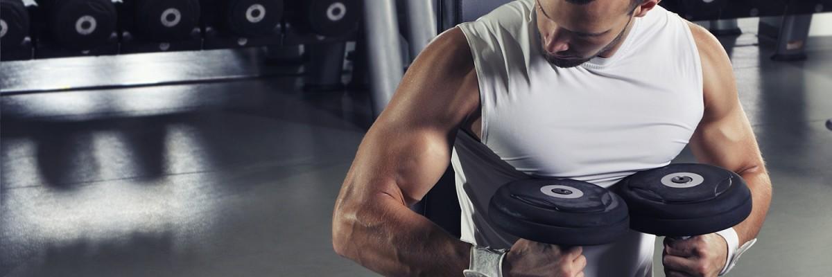Muskelaufbau Übungen Ausführung