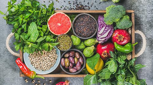 Vegane Ernährung - des Tierwohls wegen!